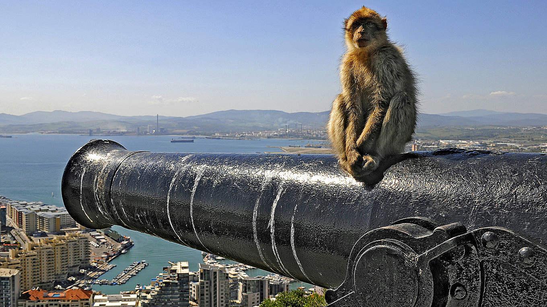 Gibraltar Nationalmannschaft